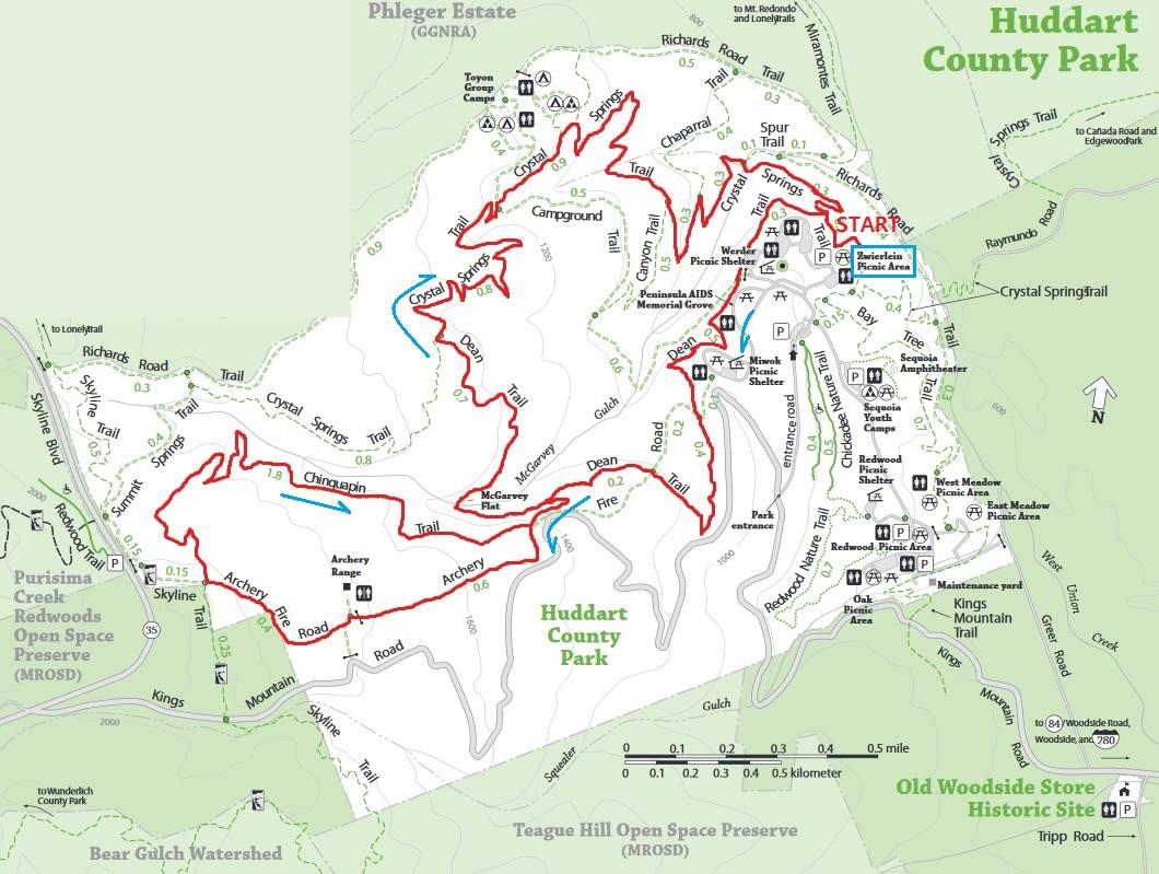 Huddart trails.jpg